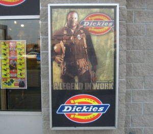 Dickies Large Format Backlit Print